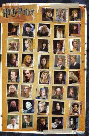 Harry Potter 7 Characters - plakat
